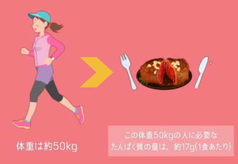 人間1食あたりの必要なたんぱく質の量
